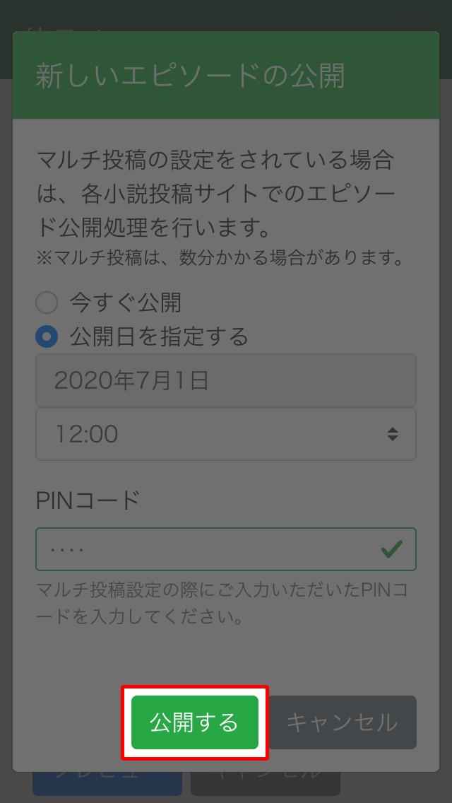 公開設定やPINコードを入力して、公開するボタンを押す